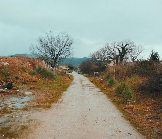 basura, vertedero ilegal, foco de contaminacion, deshechos, escombros, animales sueltos, caballos, residuos solidos urbanos, El Valle, fotografia de Torrelavega