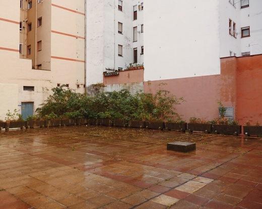 invasion vegetal, patio trasero, dia de lluvia, abandono, edificios, ventanas, Barrio La Inmobiliaria, Barrio El Mortuorio, fotografia de Torrelavega