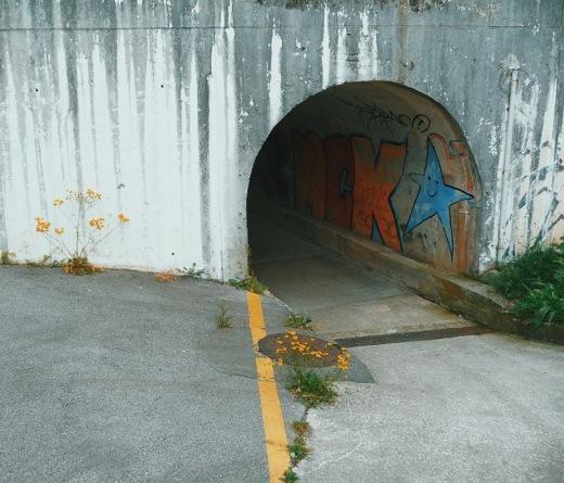 paso peatonal subterraneo, cemento, hormigon, autovia, extrarradio, progreso, graffiti, pintadas,flores amarillas, Sierrapando, fotografia de Torrelavega