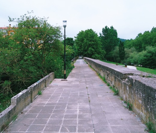 paseo fluvial, paseo junto al rio, rio Besaya, muro, farola, decadencia, paisaje de arboles, fotografia de Torrelavega