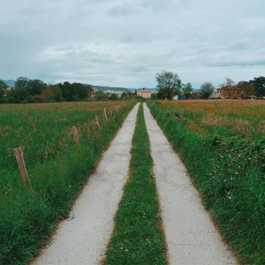 rodadas camino, camino de tierra, primavera, prado verde, horizonte, valla de palos, paisaje de arboles, fotografia de Torrelavega