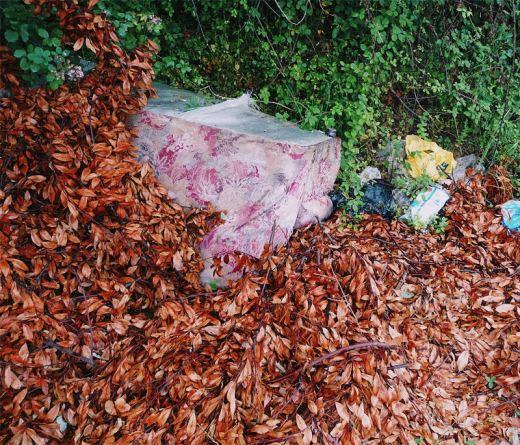 desechos, basura, residuos solidos urbanos, ramas y hojas secas, incivismo, abandono, El Valle, fotografia de Torrelavega