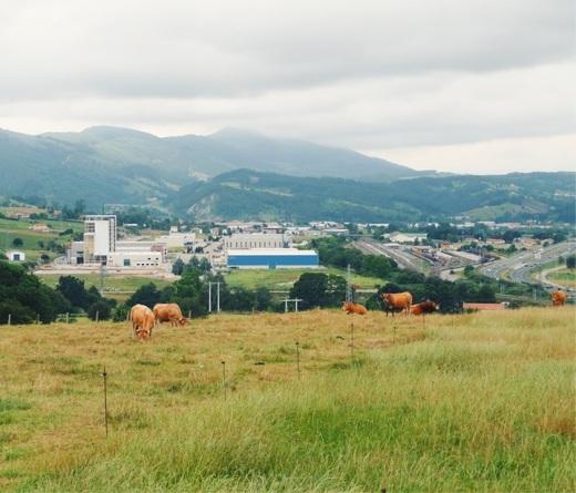 industria, Poligono Industrial Tanos-Viernoles, fabrica, nave industrial, factoria, prado con vacas, horizonte de montañas, fotografia de Torrelavega