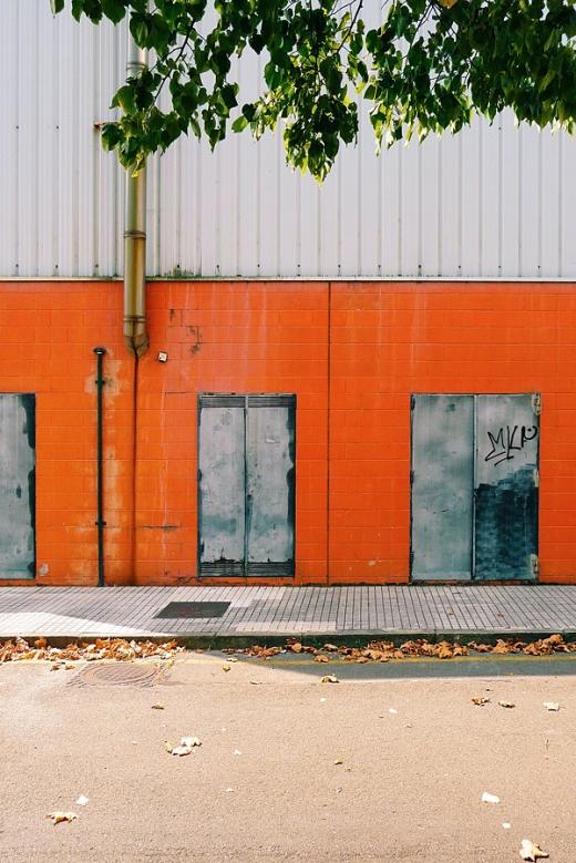 puerta de atras, callejon, hojas secas, arbol, sombras, fotografia de Torrelavega