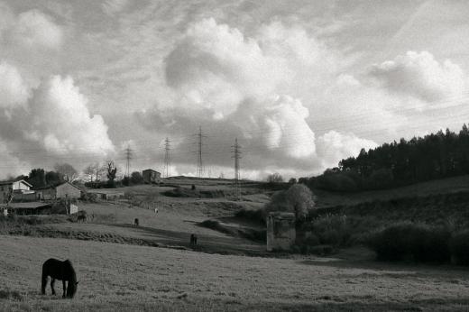 grupo de casas, ladera, prado, caballos, torres eléctricas, horizonte, paisaje con árboles
