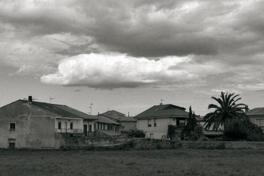 cielo, día nublado, luz, palmera, casas, Campuzano