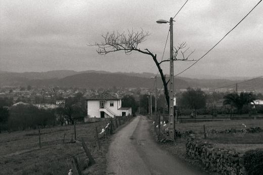 horizonte de montañas, carretera, casas, niebla