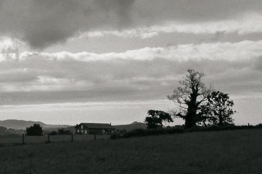 horizonte de montañas, paisaje con arboles, nubes, atardecer