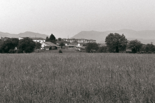 paisaje, horizonte de montañas, prado, árboles con casas, niebla