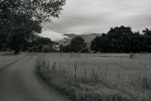 bruma, horizonte de montañas, paisaje con árboles, carretera perdida