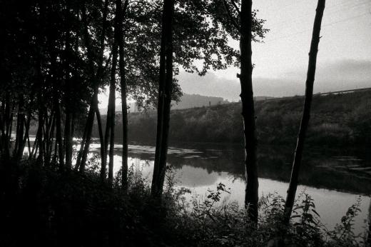 orilla del rio, arboles de ribera, horizonte, confluencia Saja Besaya