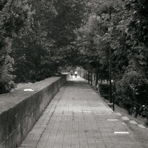 tunel de arboles, paseo de ribera, muro, paisaje con arboles, personas