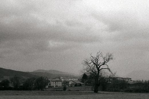 Paisaje, horzonte de montañas, niebla, árbol con casas, Barrio de Torrelavega