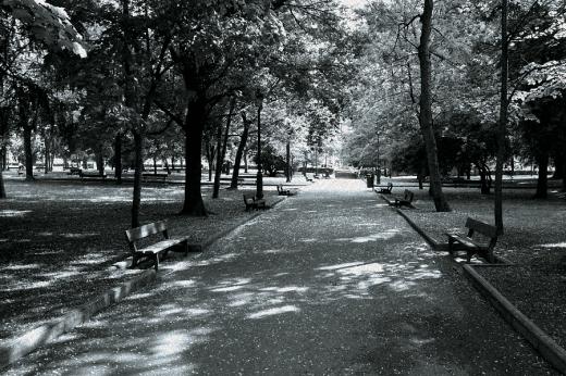 Primavera, polen, gramíneas, árboles, parque Manuel Barquín en Torrelavega